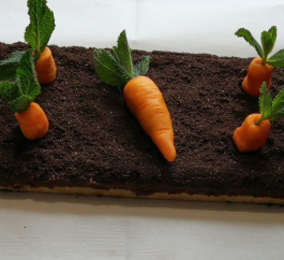 Tarta Huerto de Zanahoria con Tm5